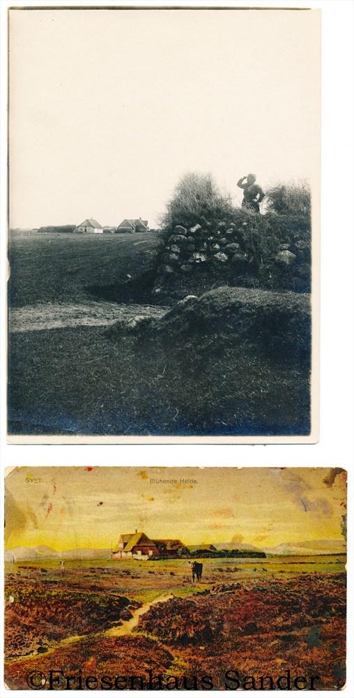Früher stand das Friesenhaus Sander noch auf der grüne Marschenwiese